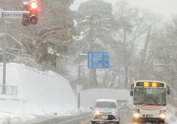 スノーシューツアーの道路状況