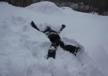 みなかみらしい雪が降りました